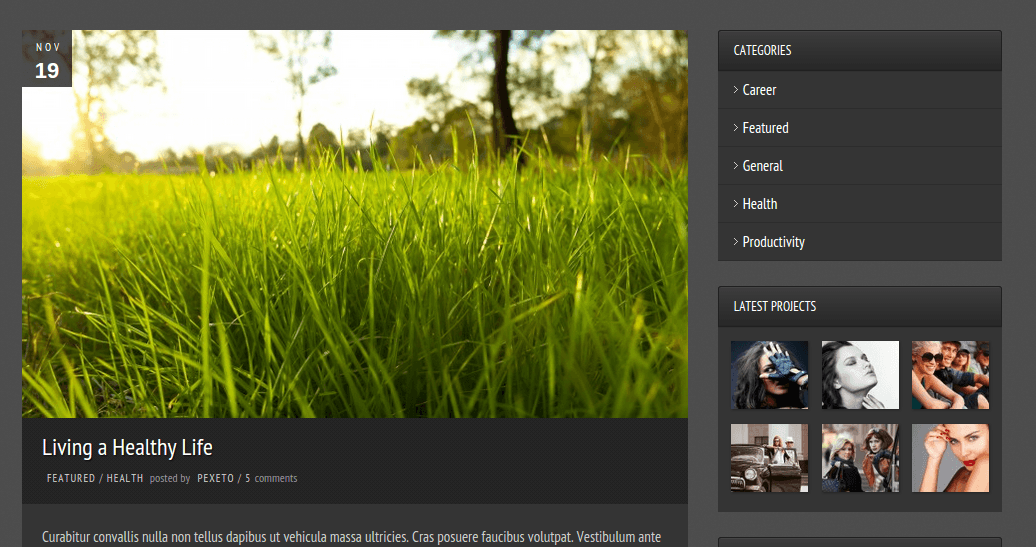 Blog page of Photolux
