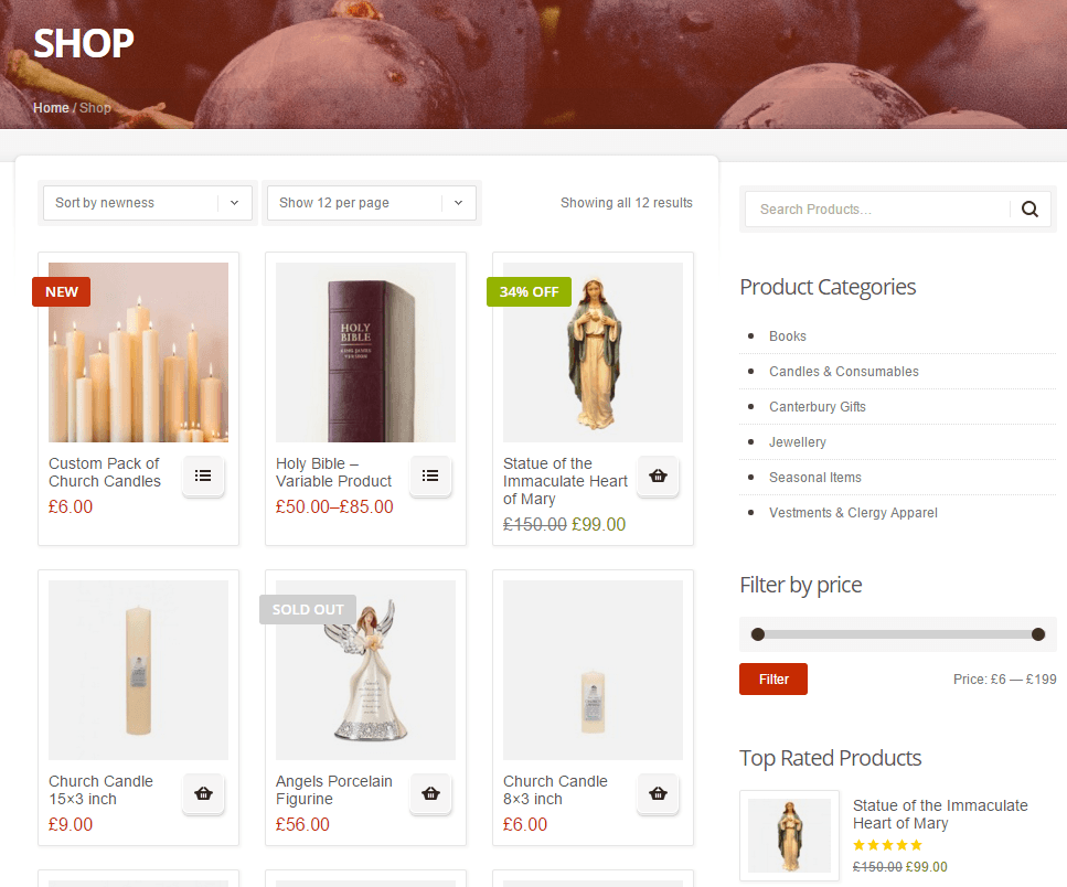 ChurcHope- Shop page of this theme