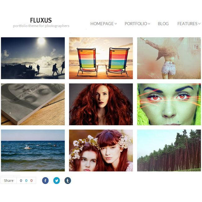 Fluxus- Responsive Portfolio theme for Photographers