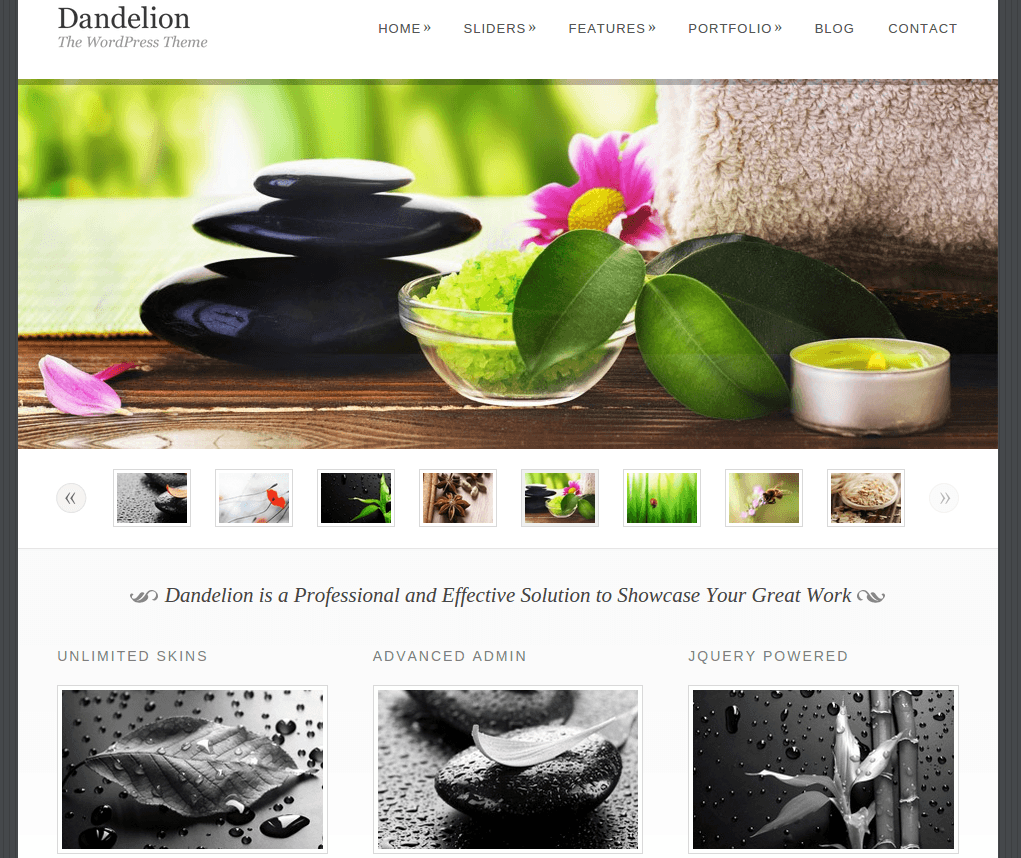 Home Page of Dandelion