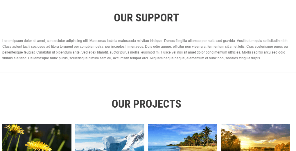 SKT white shows their projects as well as provides you support.