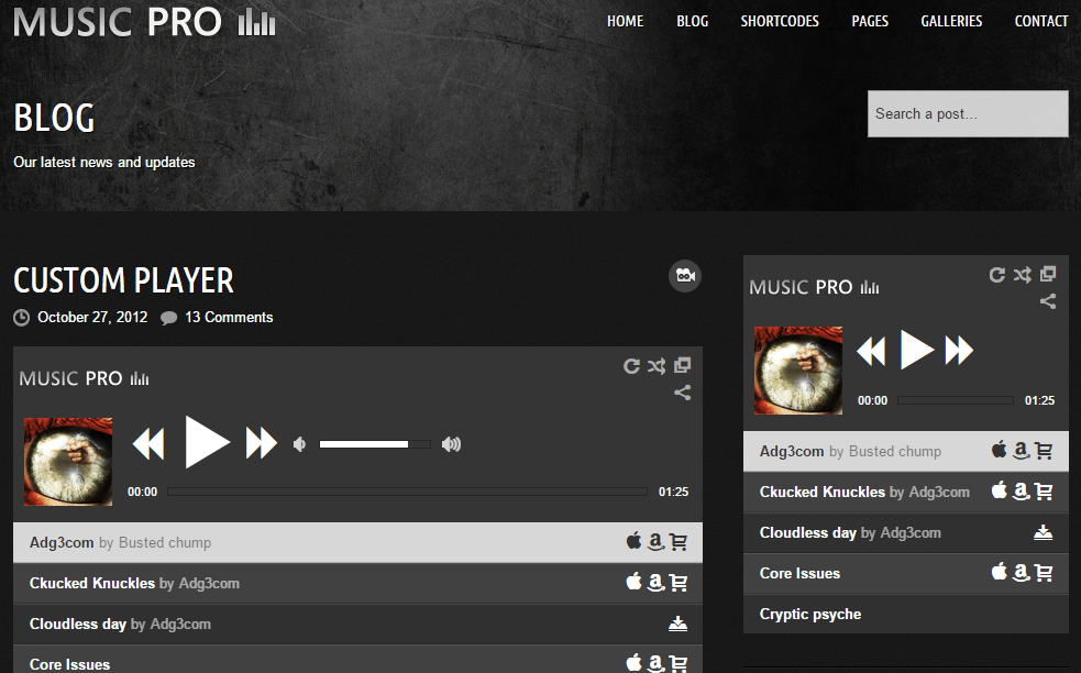Music Pro- Blog page with widgetised sidebar which is perfect for your band site