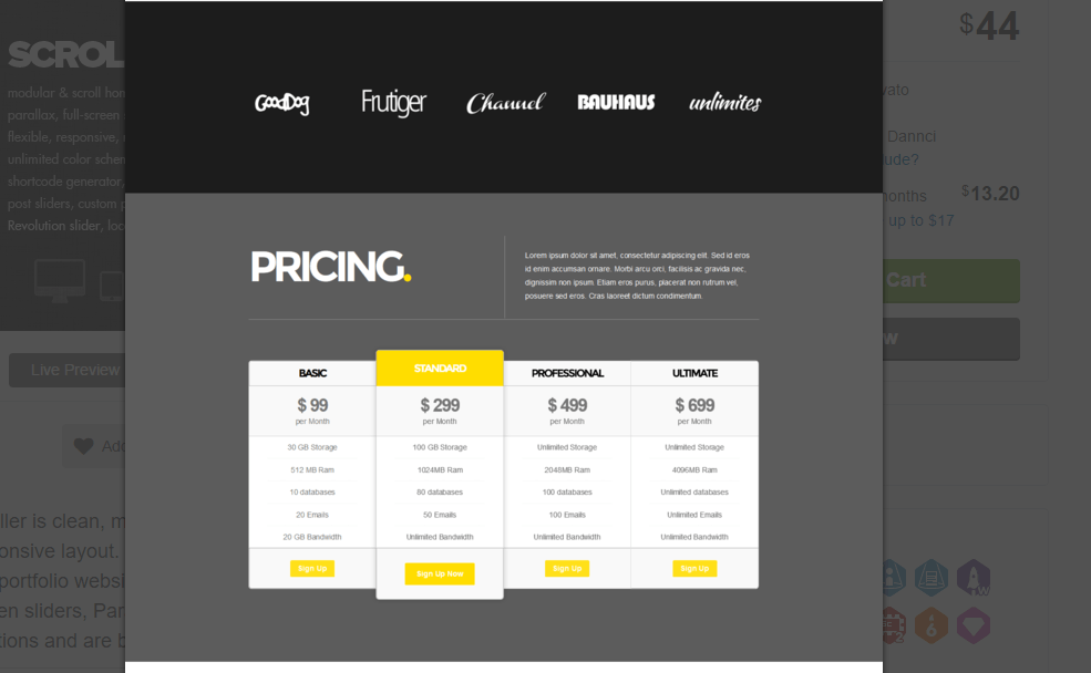scroller shows pricing table for standard,basic,professional and ultimate columns