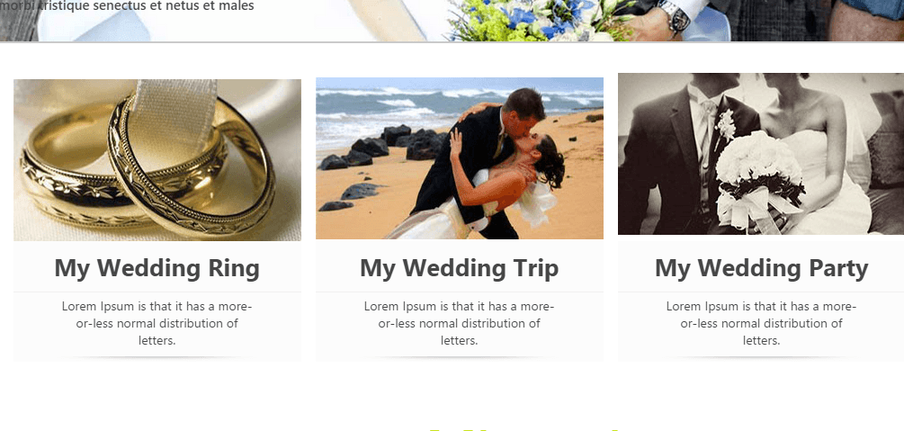 wedding home page contains attractive pictures of wedding ceremony