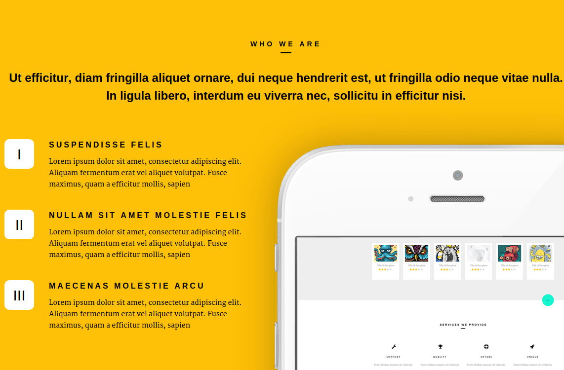 About-Page-Of-Rhino-Theme