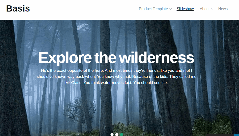 Basis theme showing Fullwidth slideshow