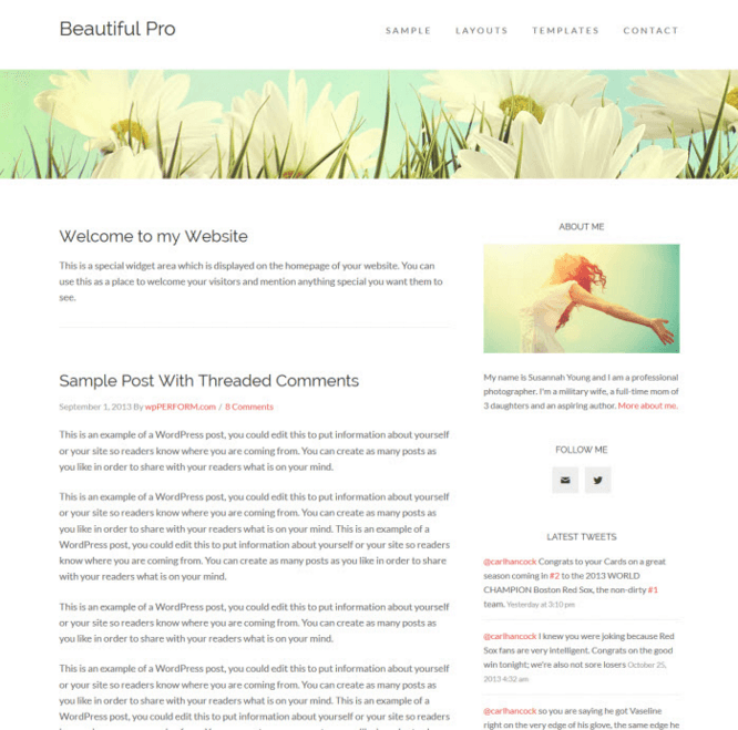 Beautiful Pro - Blog based WordPress theme