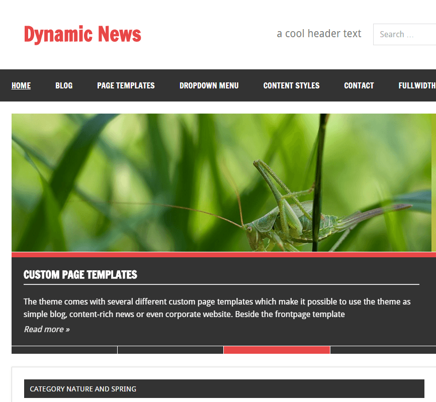 Dynamic News Lite- A Magazine or News and Blogging WP Theme