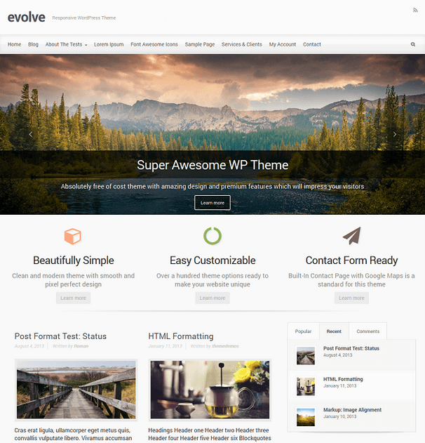 Evolve-WordPress-Theme-template