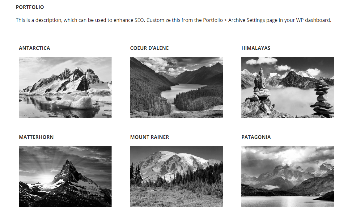 Executive Pro- Portfolio page template with grid layout