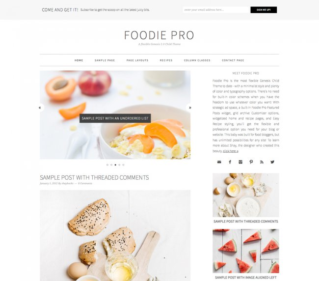 Foodie Pro- A food based blogging WordPress Theme