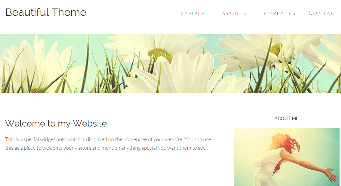 Homepage of Beautiful pro theme