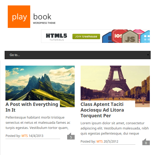PlayBook WordPress Theme