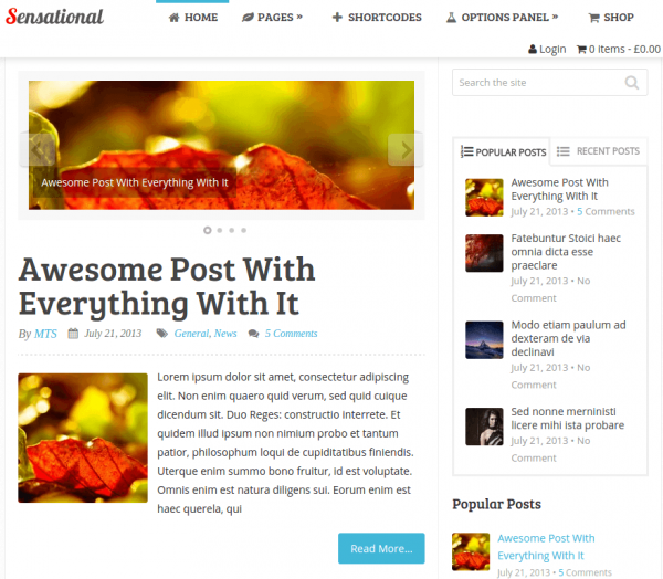 Sensational WordPress Theme