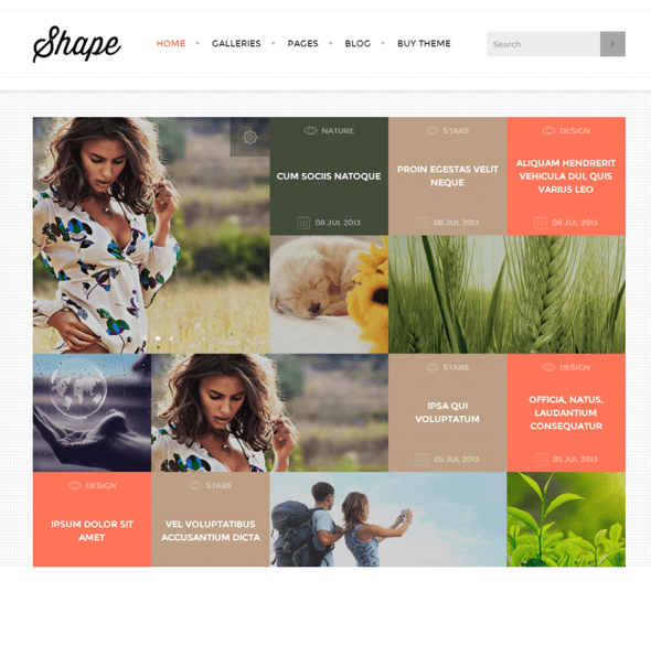 Shape - Photography WordPress theme