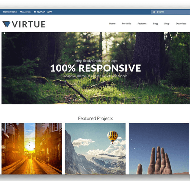 The Virtue theme is extremely versatile with tons of options, easy to customize and loaded with great features