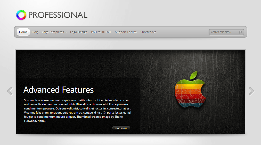 TheProfessional- Front page built with slideshow generated using shortcode