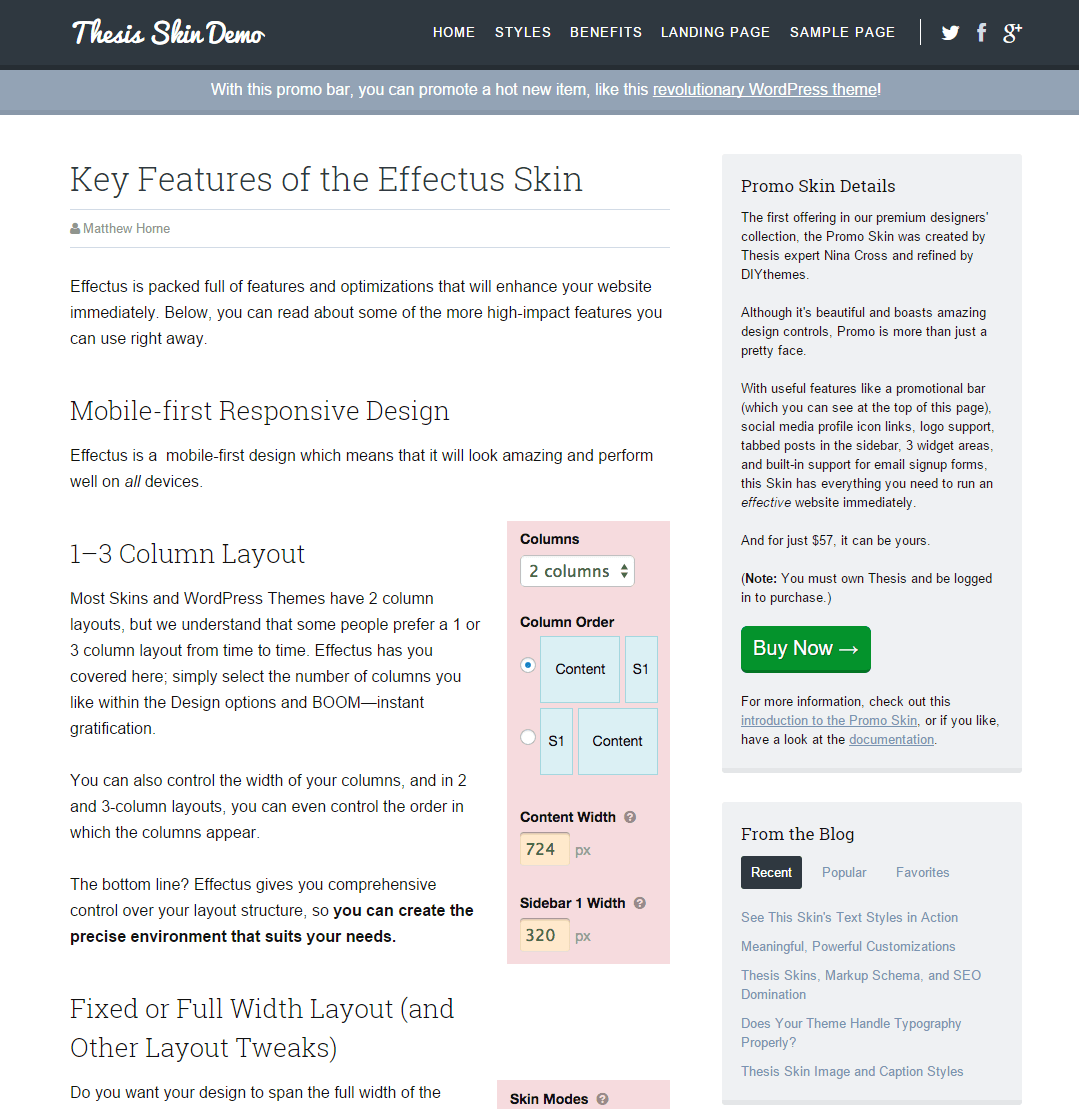 the thesis theme How to change and customise the footer appearance in wordpress theme  thesis in a few easy steps with thesis open hook, thesis options.