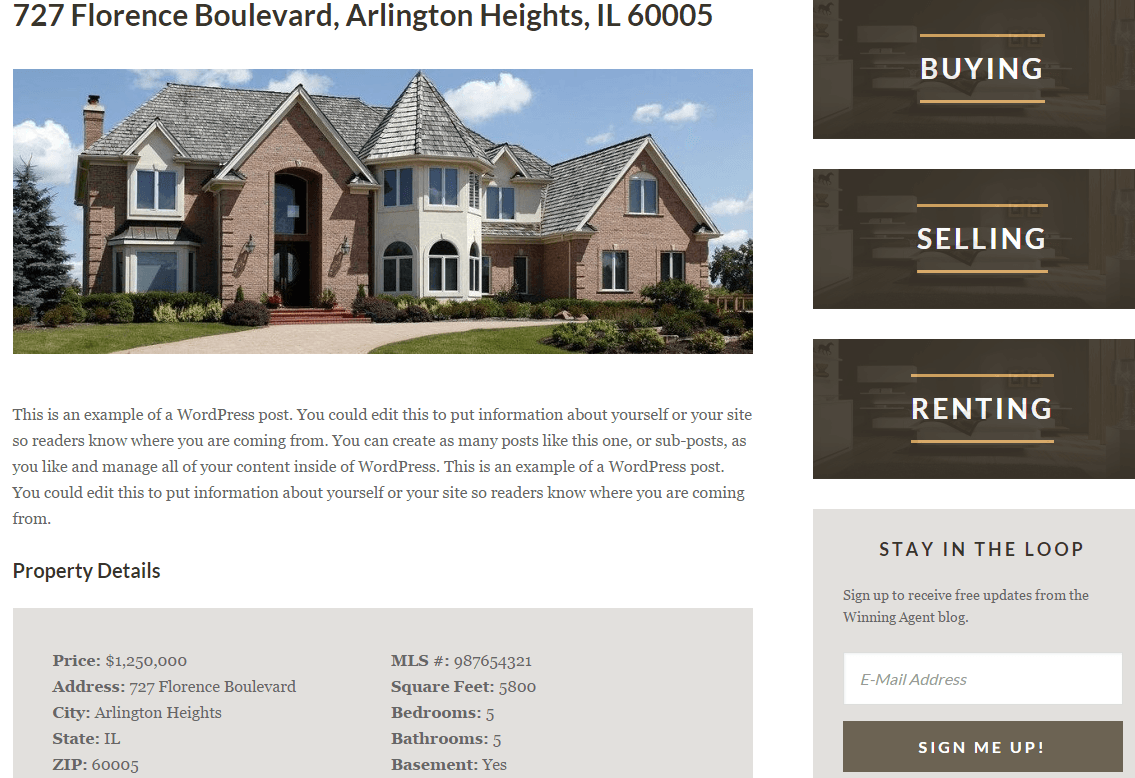 Winning Agent theme's Real Estate page showing sinle listing
