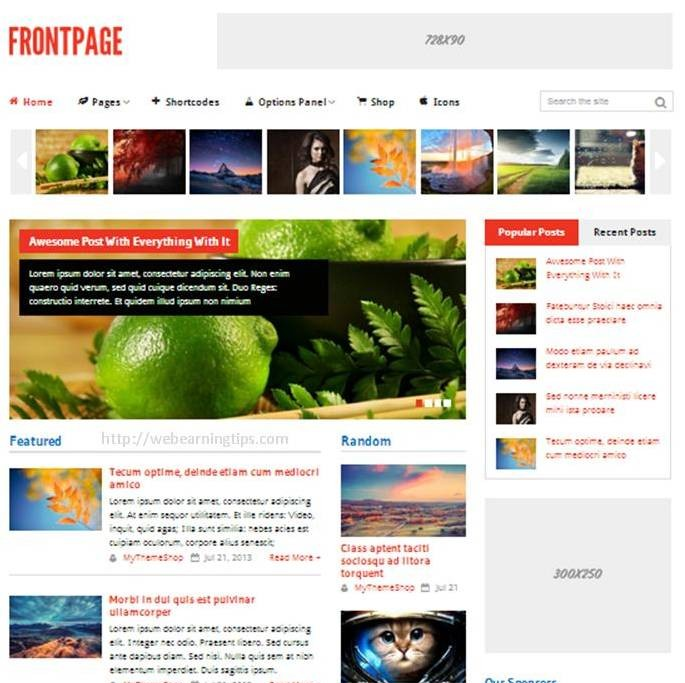 frontpage-theme-Wordpress