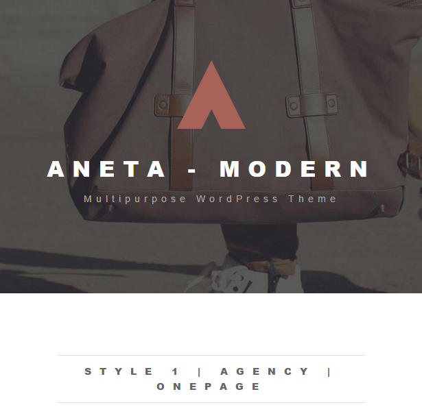 Aneta- A modern multipurpose WordPress theme