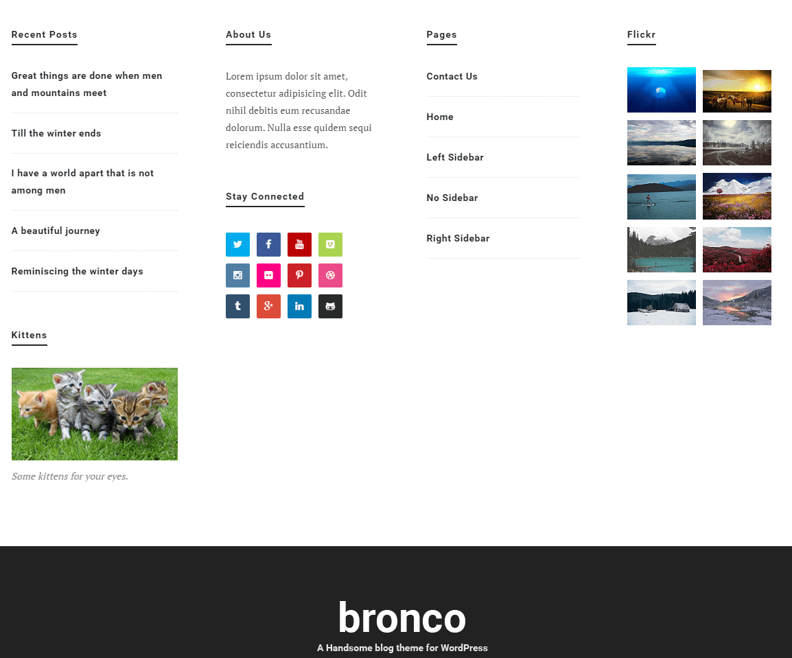 Bronco- Footer of this theme is wide enough and widgetized