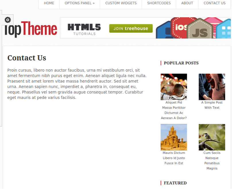 Top WordPress theme for blogging theme