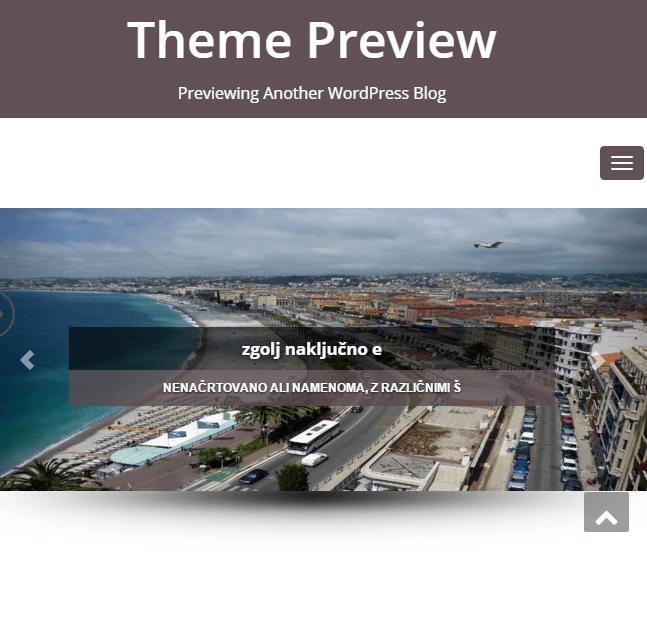 Enigma-parallax - A WordPress theme for business sites
