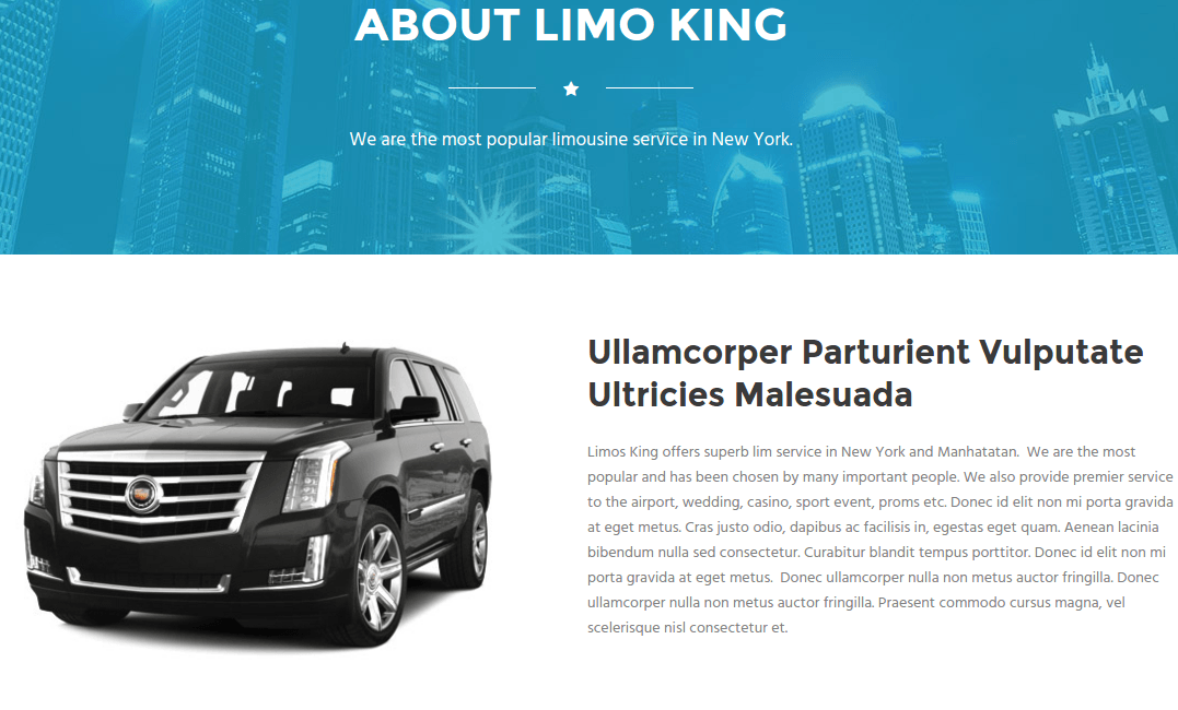 Limo King About Page