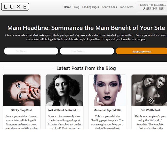 Luxe - Blog based WordPress theme