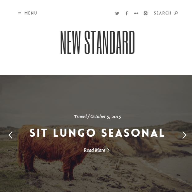 New Standard- A responsive Blogging WordPress theme