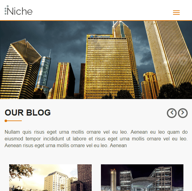 Niche- A business and Personal Blogging WP theme