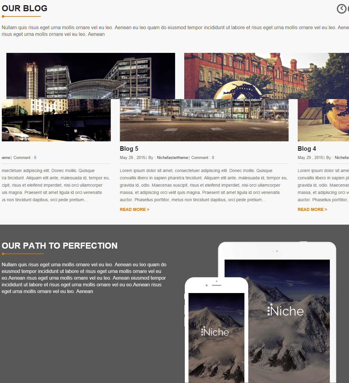 Niche- Front page of this theme featured with blog posts
