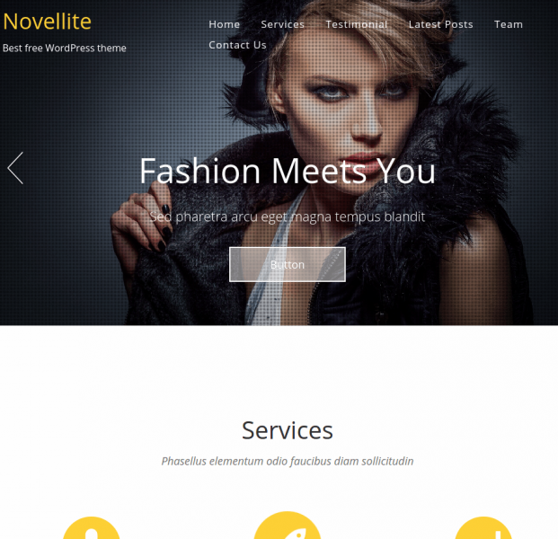Novellite-Wordpress-theme-product