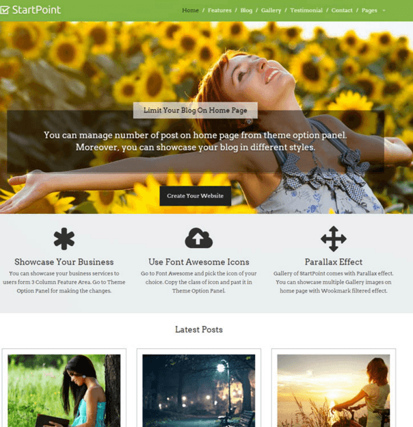 StartPoint - One page Business WordPress theme