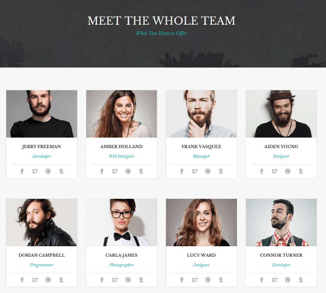 Team Page of Virtuoso