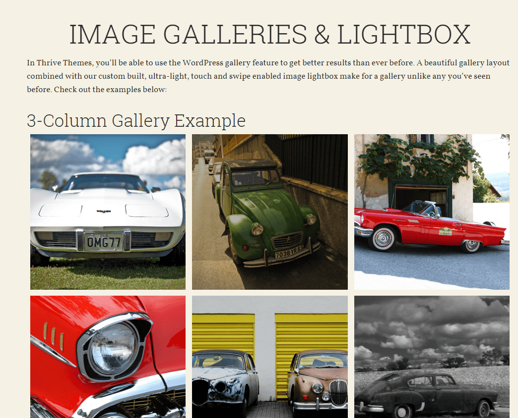 Voice - Shortcodes for creating image galleries and lightbox
