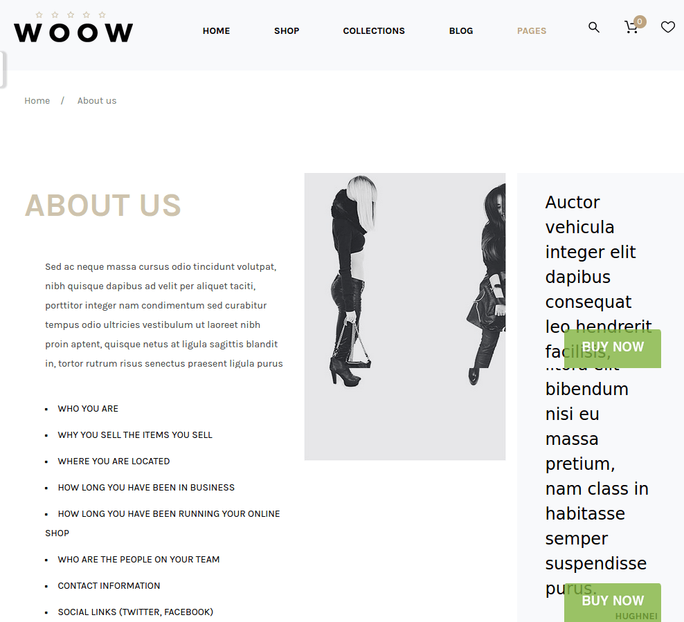 Woow-WordPress-theme