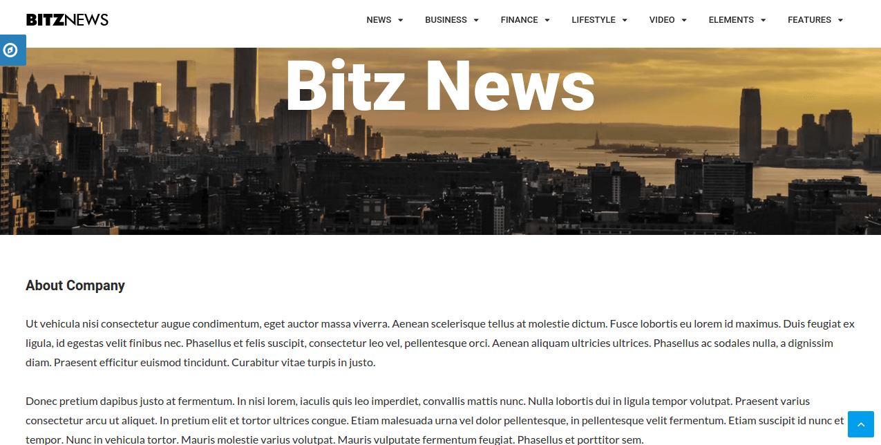 About Us page of Bitz