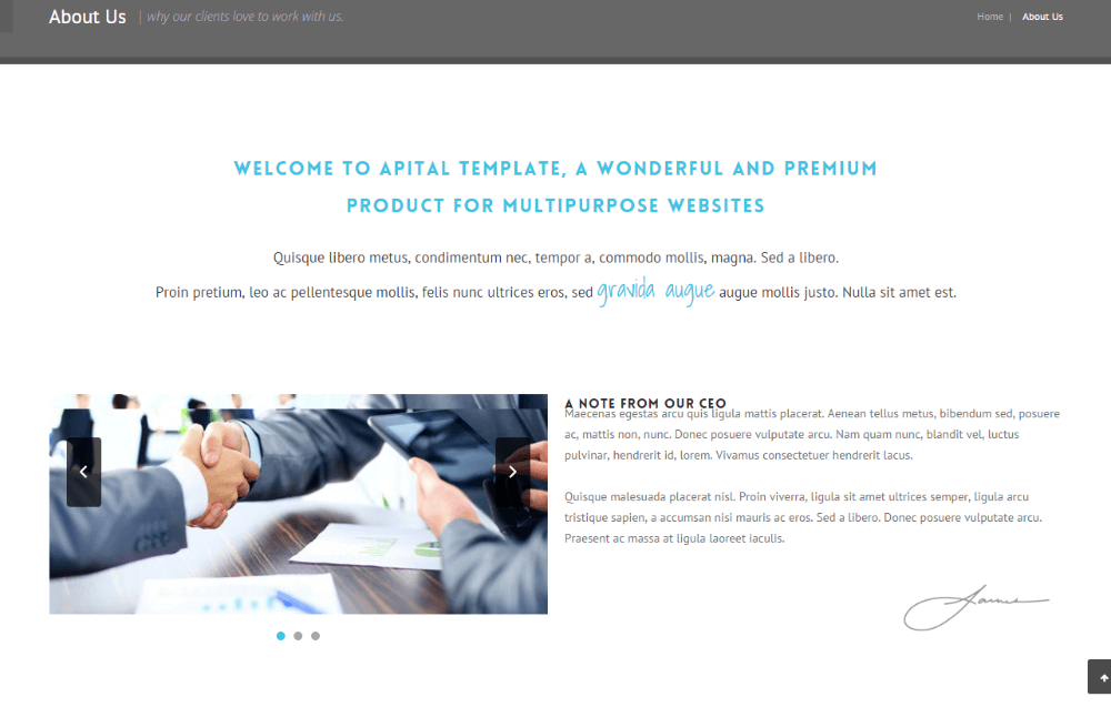 About us page of Apital theme