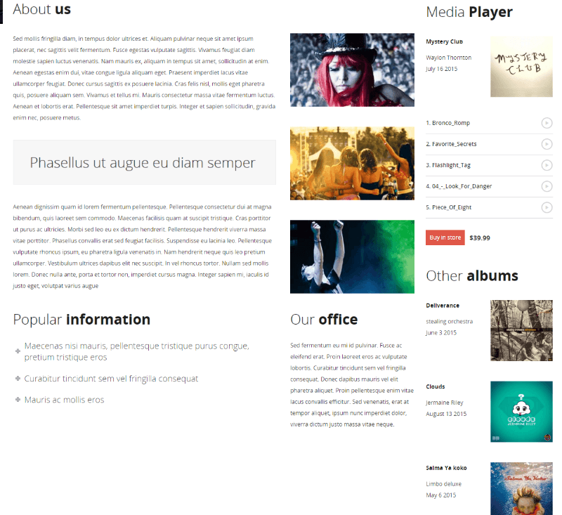 About us page of MUSIC FLOW theme