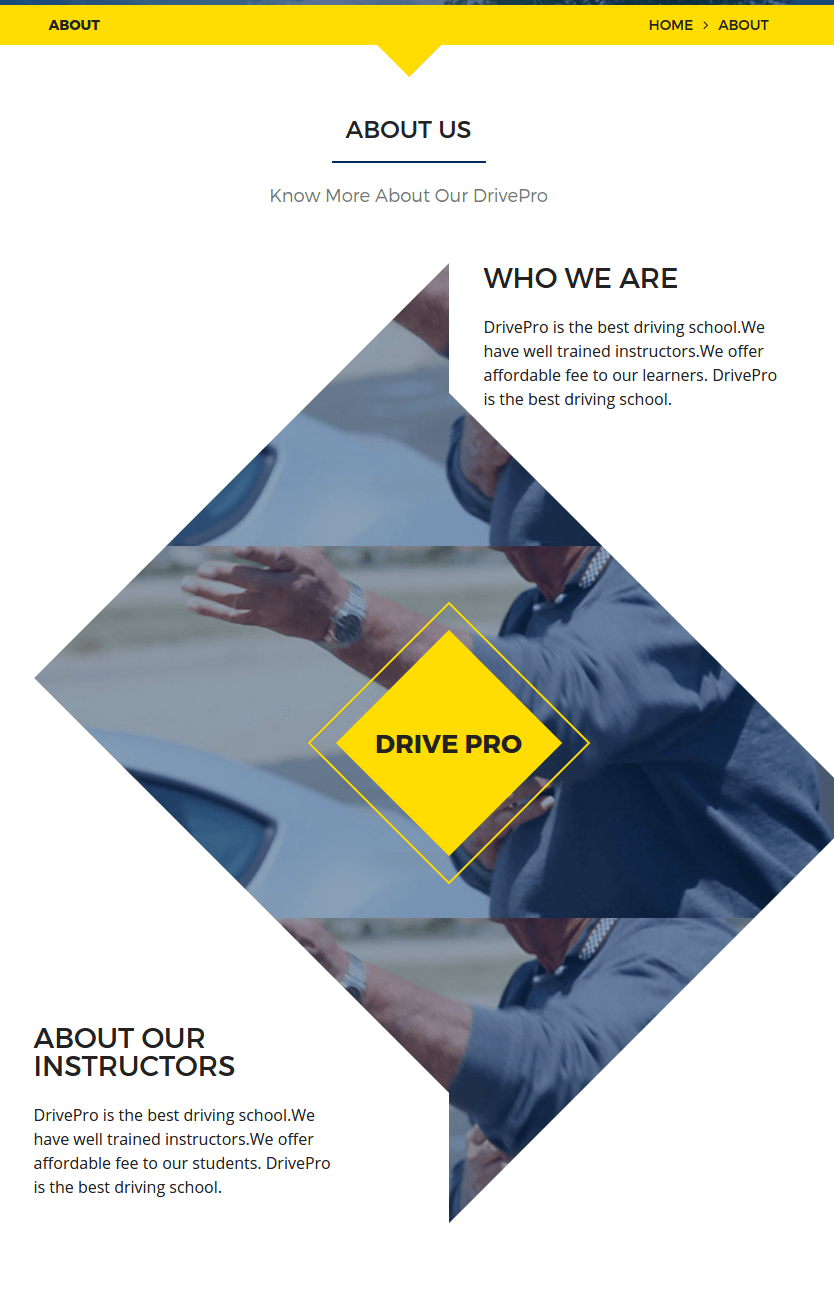 About us page of drivepro