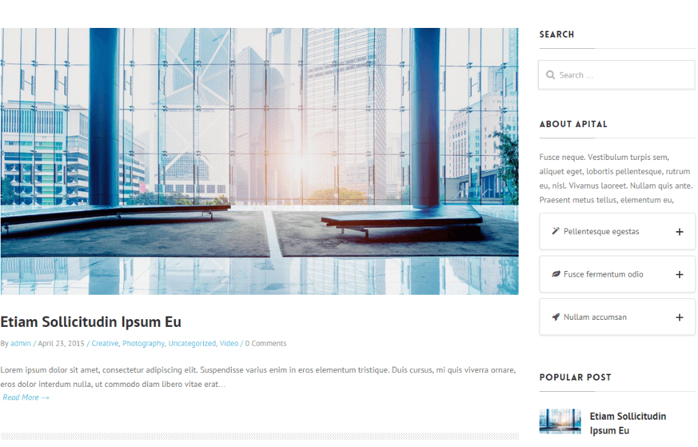 Blog page of Apital theme