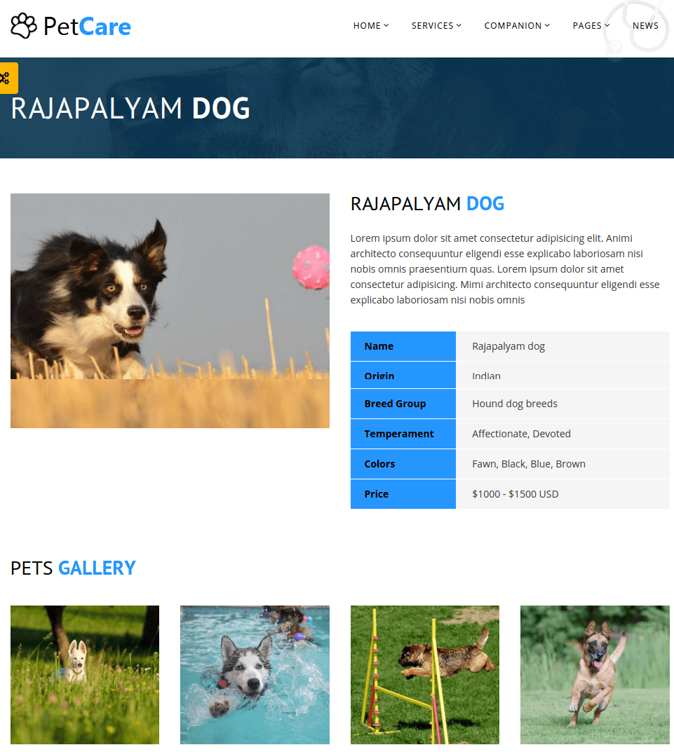 Companion page of Petcare-min