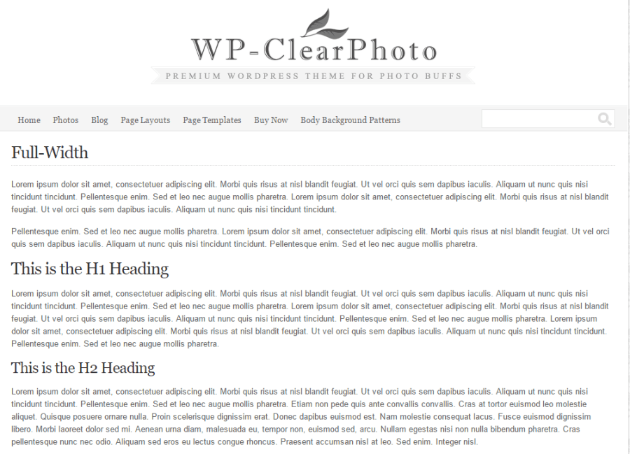 Full width page of WP-Clearphoto theme