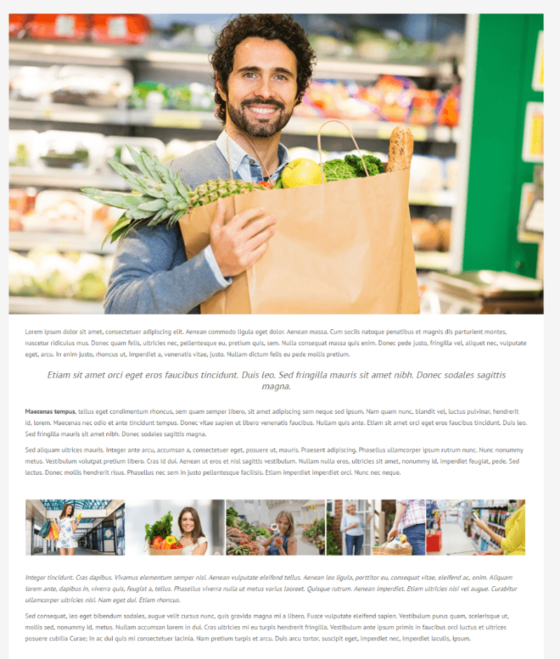 Full width page of shopica theme
