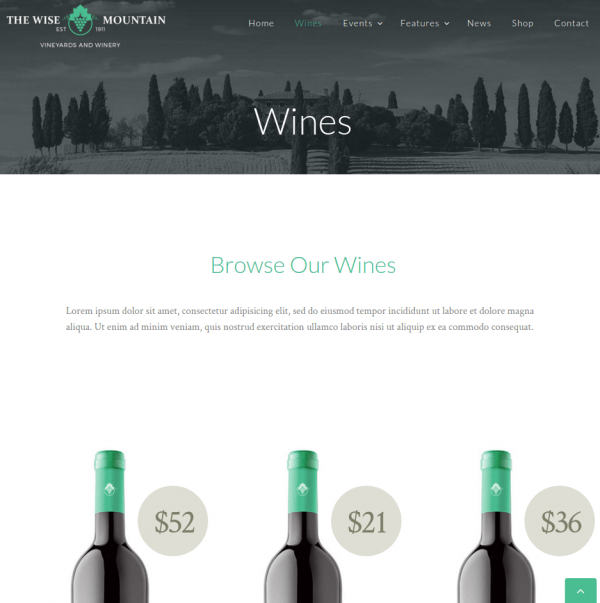 Homepage The Wise Mountains
