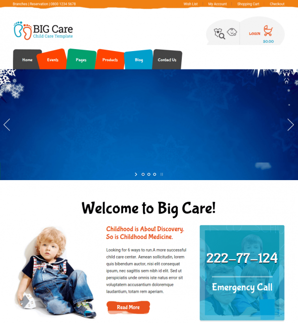 Homepage of Bigcare