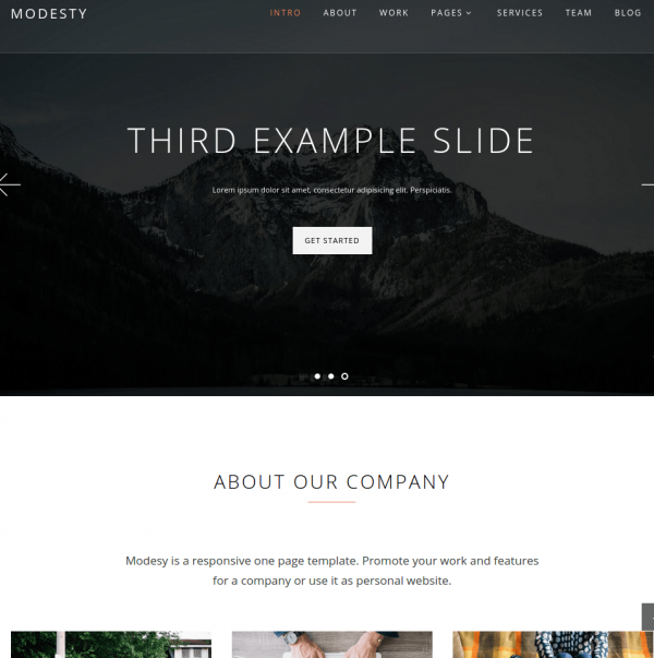 Homepage of Modesty