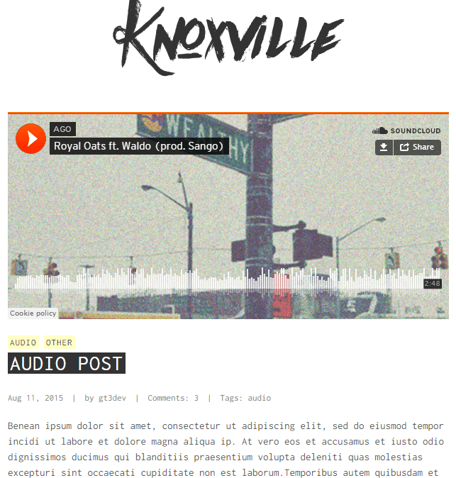 Knoxville - Responsive WordPress Blog theme